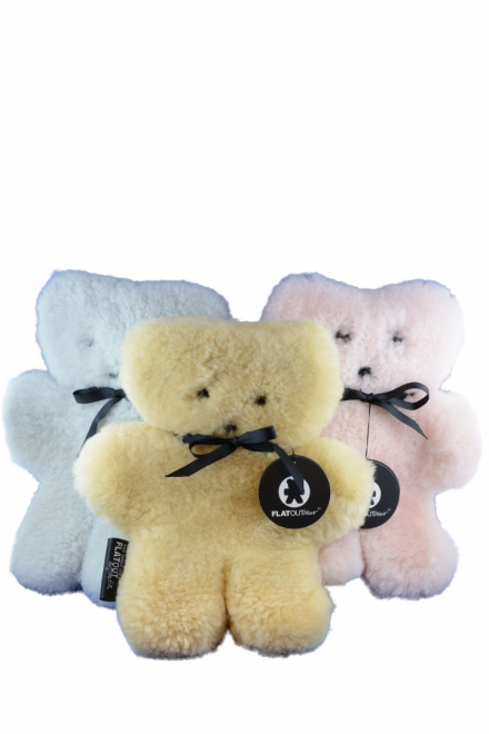 FLATOUT BEAR REGULAR ASSORTED COLOURS
